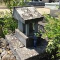 Photos: 逍遙院(甲府市桜井町)