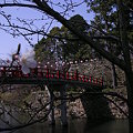 岡崎城(城の周り14)