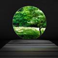 Photos: 緑の円窓