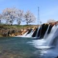 十二ヶ滝と満開の桜