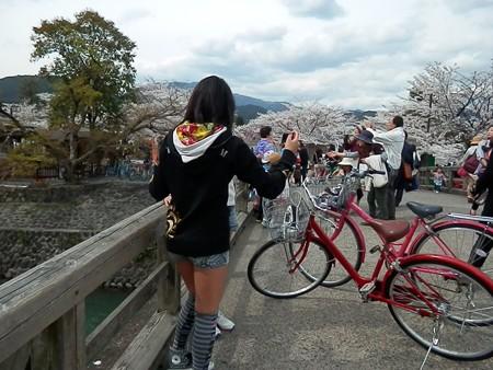 嵐山の写真98