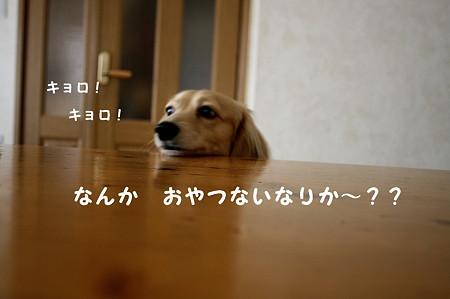 腹ペコ摩耶さん