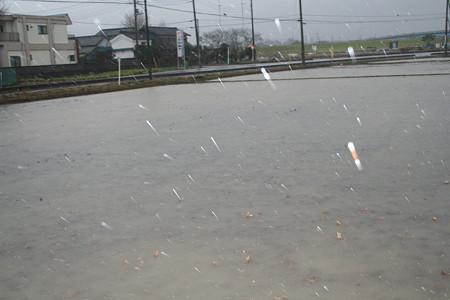 結構強い雨が降ってます(T_T)