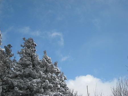 山頂で一瞬だけ見えた青空