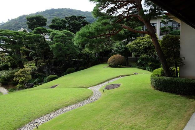 起雲閣の緑あふれる庭