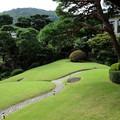 Photos: 起雲閣の緑あふれる庭