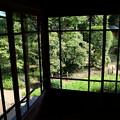 Photos: 起雲閣の庭