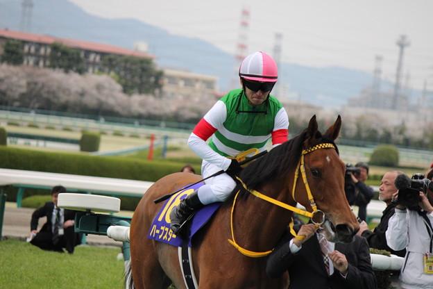 桜花賞を勝って戻ってきたハープスターと川田さん